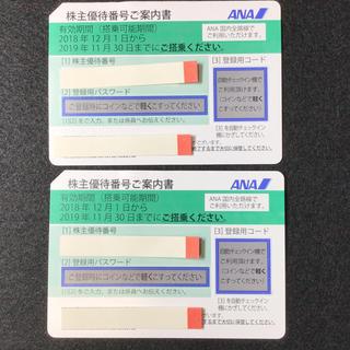 ANA株主優待券 2枚 2018年12月1日から2019年11月30日まで(その他)