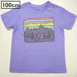 patagonia - パタゴニア ベビーフィッツロイ スカイズ 半袖Tシャツ 100cm バイオレット