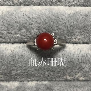 レトロ 天然血赤珊瑚 シルバー リング 赤 925 (リング(指輪))