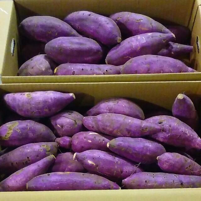 《お待たせ致しました!》幻の蜜芋紅はるか約10kg 送料無料 食品/飲料/酒の食品(野菜)の商品写真