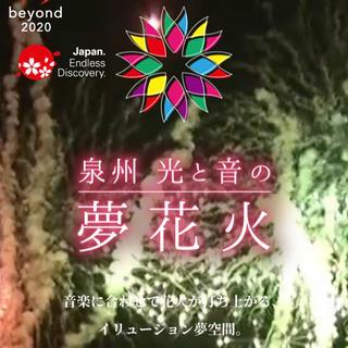 泉州 光と音の夢花火 25日 チケット