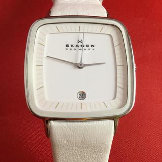 スカーゲン(SKAGEN)のスカーゲン  SKW2013スペシャルエディション(腕時計)