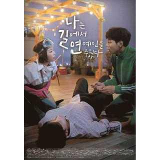 韓国ドラマ  私は道で芸能人を拾った  DVD版 全10話送料無料!