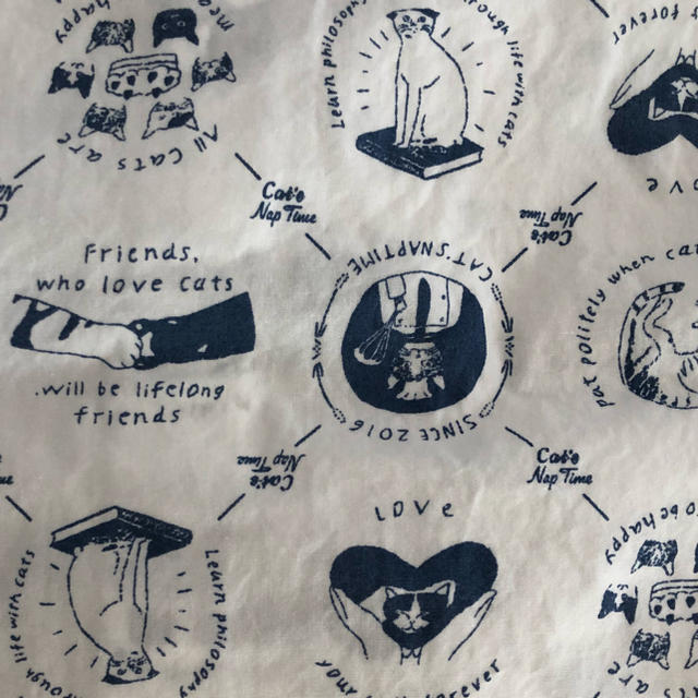 AfternoonTea(アフタヌーンティー)のAfternoon Tea Cat's Nap Time バックリボンシャツ W レディースのトップス(シャツ/ブラウス(長袖/七分))の商品写真