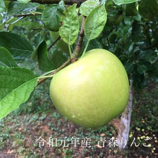 令和元年収穫品!青森県産りんご  メルシー  4キロ