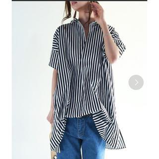 アンティカ(antiqua)の美品  antiqua 半袖シャツ ブラック / FREE(シャツ/ブラウス(半袖/袖なし))