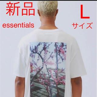 フィアオブゴッド(FEAR OF GOD)の新品 FOG  Fear Of God Essentials Photo TEE(Tシャツ/カットソー(半袖/袖なし))