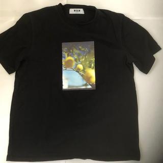 エムエスジイエム(MSGM)のMSGM レモンTシャツ(Tシャツ/カットソー(半袖/袖なし))