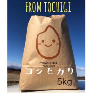 農家直送☆自慢のお米☆白米5キロ