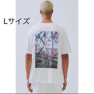 フィアオブゴッド(FEAR OF GOD)のLサイズ Essentials Boxy Photo Series T(Tシャツ/カットソー(半袖/袖なし))
