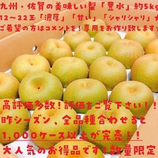 【高評価多数】専用出します!九州さが産!美味「豊水」梨約5kg(12玉~22玉)