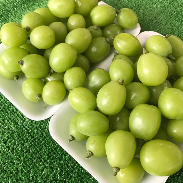 シャインマスカット 山梨県産 わけあり 送料無料 食品/飲料/酒の食品(フルーツ)の商品写真