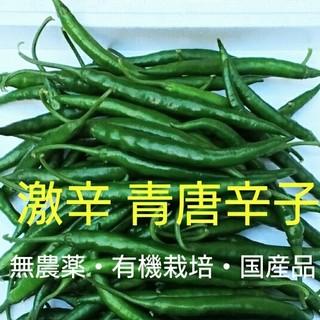激辛青唐辛子 無農薬栽培の自家製 250g