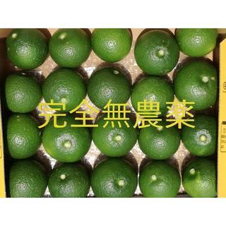 大分県名産 フレッシュかぼす ご試食版(フルーツ)