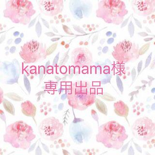 kanatomama様専用出品❁(ピアス)