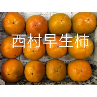 柿は和歌山♩「炭入り西村早生柿」12玉 お試し用(野菜)