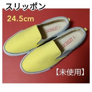 セシール(cecile)のスリッポンスニーカー 24.5cm(スリッポン/モカシン)