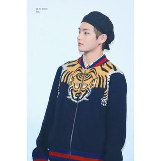 Gucci - 【最終セール】GUCCI zipセーター タイガー【BTSテテ着用】