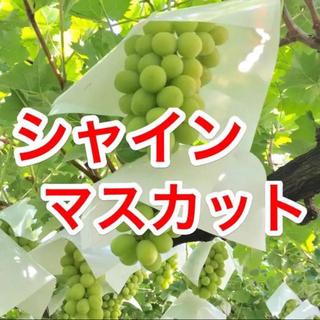 ゆーか2様 専用ページ(フルーツ)