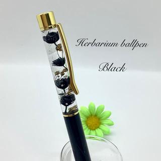 ハーバリウム ボールペン (  黒  )(その他)