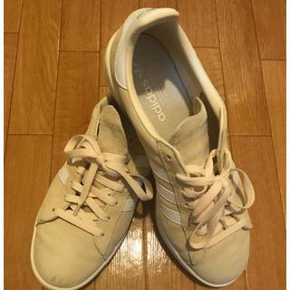 アディダス(adidas)のadidas  campas ベージュ 美品 28.5cm(スニーカー)