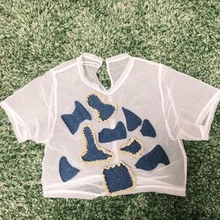 アッシュペーフランス(H.P.FRANCE)のAKIKO AOKI トップス(シャツ/ブラウス(半袖/袖なし))