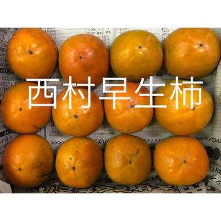 No21 柿は和歌山♩「炭入り西村早生柿」お試し用 12玉(フルーツ)