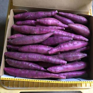 鳴門金時3Sサイズ(11)(野菜)