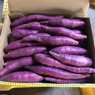 鳴門金時3Sサイ(12)(野菜)