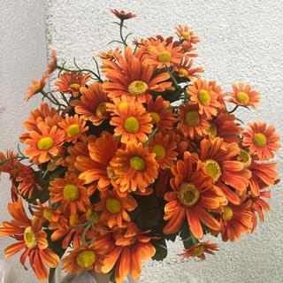 フランフラン(Francfranc)のオレンジ コスモス (ブーケ)