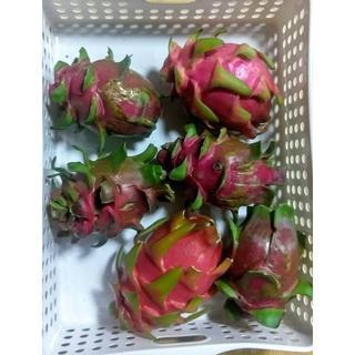 スーパーフード!甘く美味しい!沖縄産 ドラゴンフルーツ ホワイト 2kg(フルーツ)