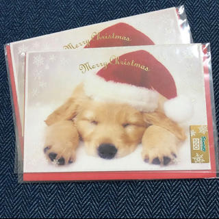 サンリオ(サンリオ)の【新品未使用】クリスマス メッセージカード 犬(カード/レター/ラッピング)