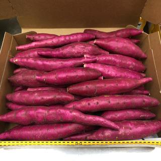鳴門金時3Sサイズ(17)(野菜)
