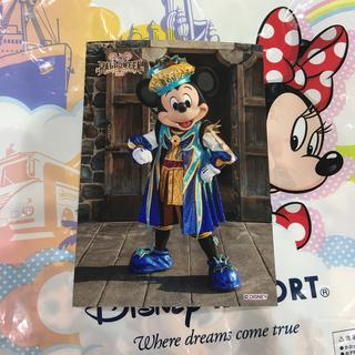 ディズニー(Disney)のディズニー スペフォ スペシャルフォト ミッキー(写真)