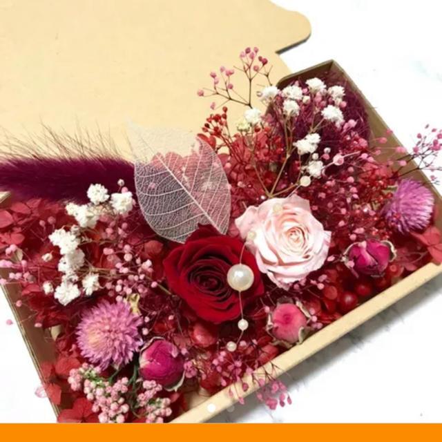 ハーバリウム 花材 ドライフラワー ハンドメイドのフラワー/ガーデン(ドライフラワー)の商品写真