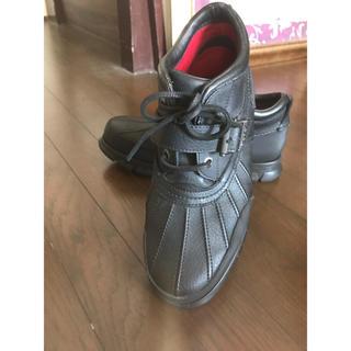 ポロラルフローレン(POLO RALPH LAUREN)のラルフローレン 靴 スニーカー  29〜29.5センチ(スニーカー)