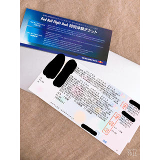 レッドブル「ULTRA JAPAN 2019」チケット(その他)