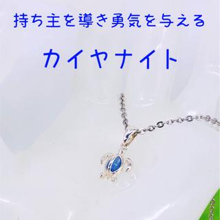 ハワイアンジュエリー新作 カイヤナイト ホヌ チャーム ネックレス(ネックレス)