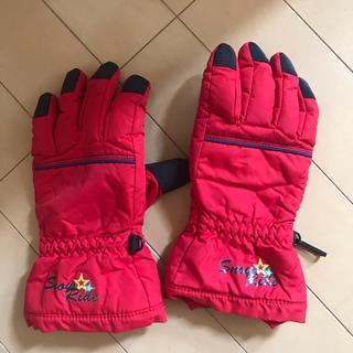 スキーグローブレッド  JSサイズ