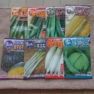 野菜の種・新品未開封品✨各種:100円~(野菜)