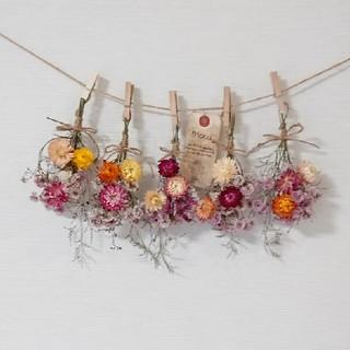 特別ボリューム貝細工と小花の彩りスワッグドライフラワーガーランド/ かすみ草 (ドライフラワー)