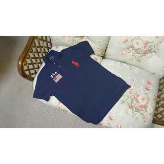 ラルフローレン(Ralph Lauren)の新品☆ラルフローレン ピッグポニーポロシャツ US M 紺 USA(ポロシャツ)