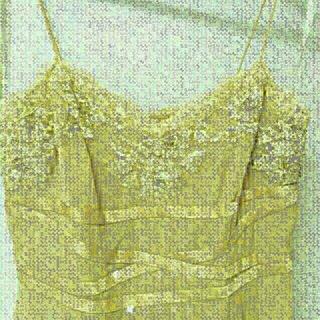 リトルニューヨーク(Little New York)のBASIX Ⅱ シルクドレス リトルニューヨーク(ミディアムドレス)