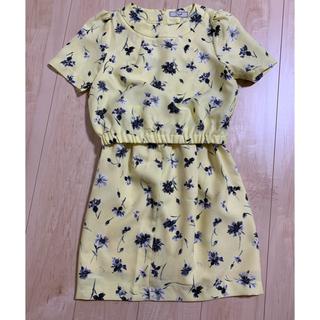 ノエラ(Noela)のNoela ノエラ トップス スカート(シャツ/ブラウス(半袖/袖なし))