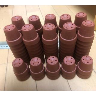 ミニプラ植木鉢 1寸  1号115個ハンドメイド材料にも(プランター)