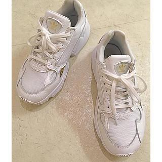 アディダス(adidas)のアディダス ファルコン ☆白 ゴールド☆クリーナー付き(スニーカー)