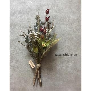 グレビレアと紅葵と白いブルニアが美しく映えるシックな ドライフラワースワッグ(ドライフラワー)