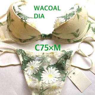 ワコール(Wacoal)の定価4万円 WACOAL DIA ディア 最高級 C75×M ブラ ショーツ(ブラ&ショーツセット)
