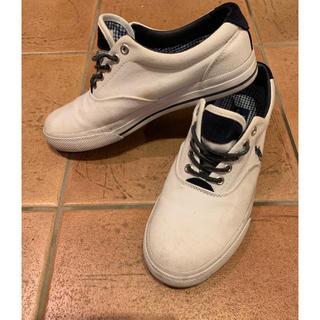 ポロラルフローレン(POLO RALPH LAUREN)のPOLO RALPH LAUREN ポロ ラルフローレン メンズ 靴(スニーカー)