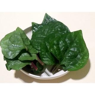 無農薬野菜 つるむらさき  [紫茎種]  ご注文いただいてから収穫します!!(野菜)